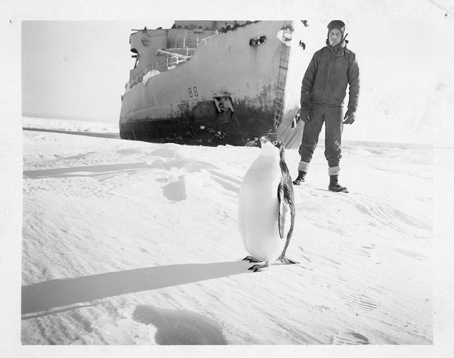 Expedition Member with Penguin in Antarctica